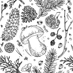 Pattern Tree twigs and cones painted line on a white background. Forest sprigs. Tree, fir, pine cones, twigs