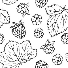 Pattern of vector berries and leaves. Wild berries painted line on a white background.