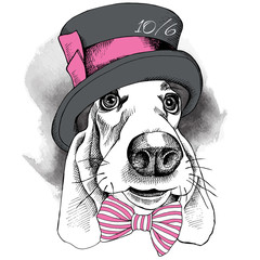 The image with the portrait of a dog in the Hatter hat and with bow. Vector illustration.