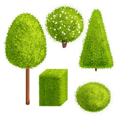 Set trees and bushes