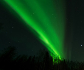 Green aurora splits the night sky