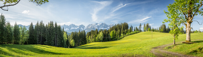 Papiers peints Kaki Panorama mit Blick auf die Berge Wilder Kaiser