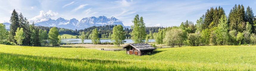 Landschaft - Panorama mit Wiese und Berge im Hintergrund