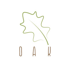 oak leaf abstract outline vector design template