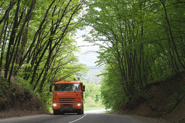 truck on the forest road