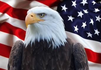 Stati Uniti Bandiera con Aquila
