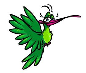 Bird hummingbird cartoon illustration  image character  animal
