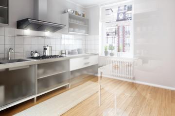 Renovierte Küche (Vison)