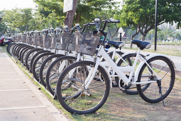 bicycle parking,row of parked white bicycle