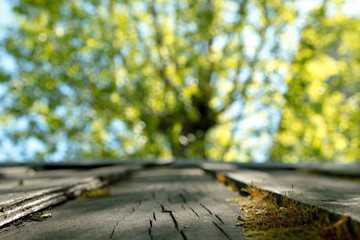 Empty wood table over blurred trees with bokeh background