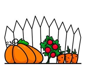 Garden vegetables cartoon illustration  minimalism Pumpkin Tomato Carrot