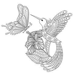 Hand drawn zentangle tribal flying butterfly, Hummingbird in hib