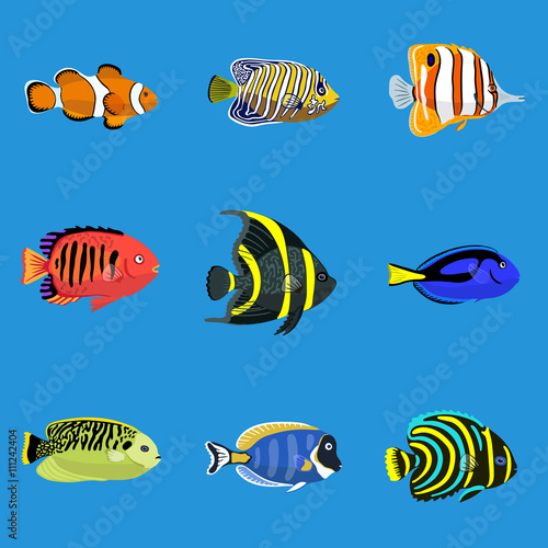 Set of tropical ocean fishes, vector illustration