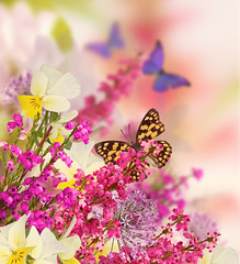 Background for design with flowers, beautiful bouquet of flowers with a butterfly