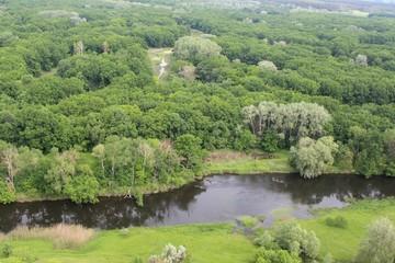 Вид на реку у зелёного леса
