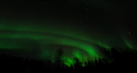 Ripples of green aurora