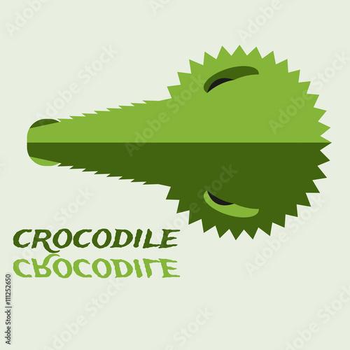 Crocodile Head Silhouette Reflected In Water Crocodile Face Icon
