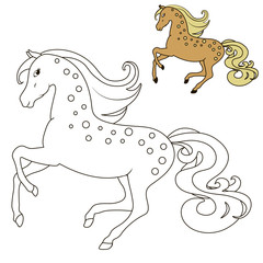 education of the horse in motion coloring book for children, with examples of flowers vector illustration