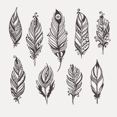 boho feather hand drawn set eps8