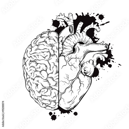 Heart Tattoo Line Drawing : Quot hand drawn line art human brain and heart halfs grunge