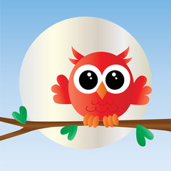 a cute little red owl