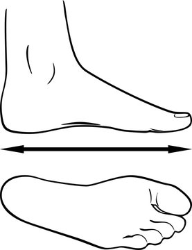 Black and white outline of the foot