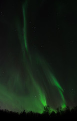 Green aurora drifts across the night sky
