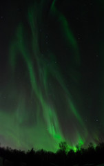 Bright aurora feds the night sky