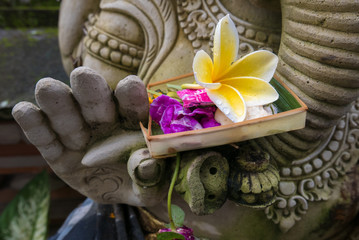 Religious offering in Genesh statue hand, Bali