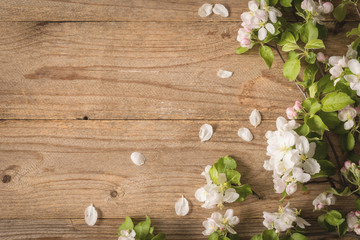 Wooden background and blossoms. 