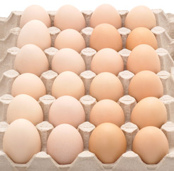 Eggs in the tray.