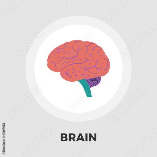 flat brain icon - photo #12