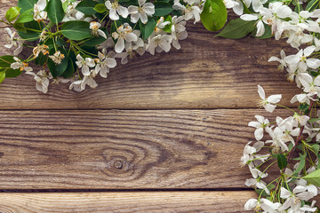 Spring flowering branch on wooden background. Apple blossoms.