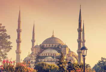 Hagia Sophia in Istanbul Turkey, close up, at sunset time