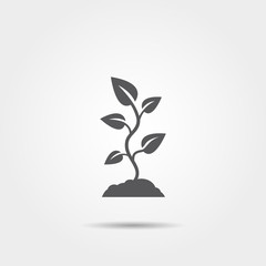 Plant sprout icon