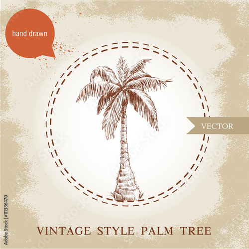 Hand Drawn Coco Palm Tree Sketch Illustration On Vintage Grunge