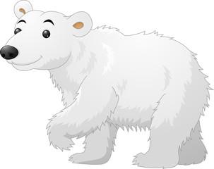 White Polar Bear cartoon