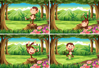 Four scenes of monkeys in the park