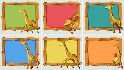 Wooden frame design with giraffe