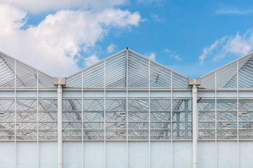 Front view of a greenhouse