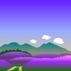 Lavender hills in summer vector illustration