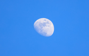 Moon closeup on light blue sky