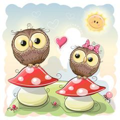 Two cartoon owls