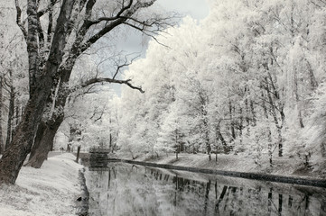 Infrared landscape. Trees and water in park