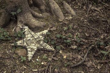 Umweltverschmutzung im Wald