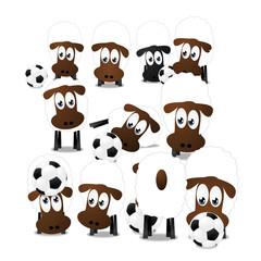 Schafe mit Fußball