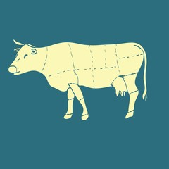 cow meat