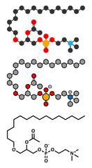 Platelet Activating Factor (PAF) signaling molecule.
