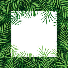 border frame tropical palm leaf