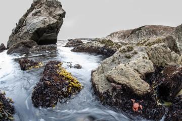 Rugged Northern California Coastline